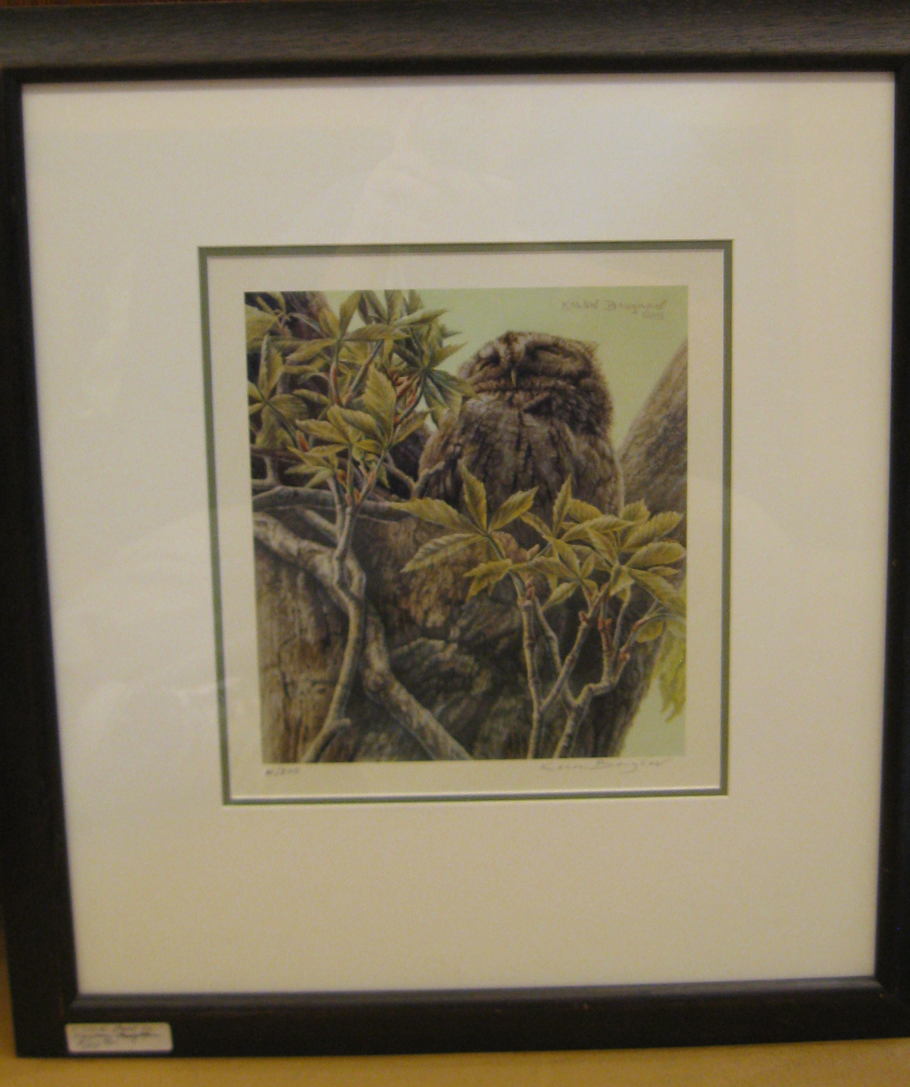 Owl in Tree Signed Kaylon Baughan Print No. 61/300 - 22 1/4